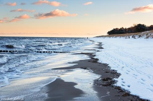 Winter Beach Stroll