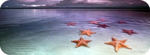 18695-starfish-on-the-beach